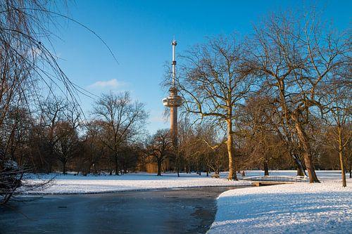 De Euromast - winter 5