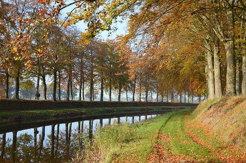 Herfst aan de Schipbeek
