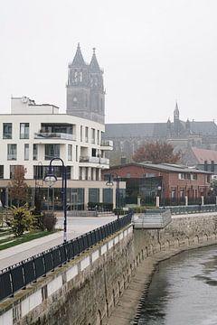 Promenade aan de oever van de Elbe bij Maagdenburg van Heiko Kueverling