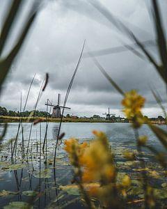 Hoornsevaart - Alkmaar bei schlechtem Wetter von Pim Haring