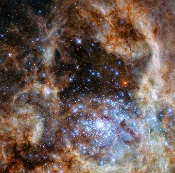 Hubble Space Telescope Photo. van Brian Morgan