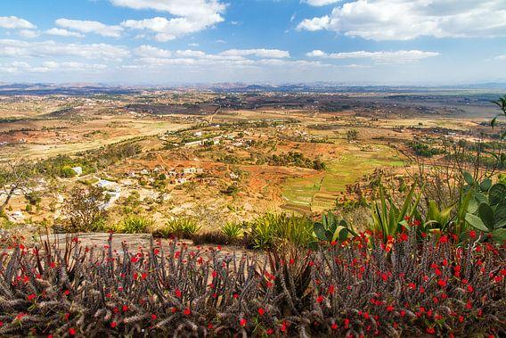 Antananarivo vanaf de koninklijke heuvel Ambohimanga van Dennis van de Water
