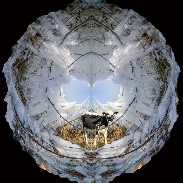 Koe bevangen door ijs. van Greet ten Have-Bloem