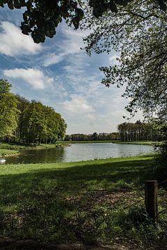 Vennetje in het bos van Klaas Leussink