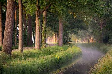 Un matin brumeux à Wijhe sur Edwin Mooijaart