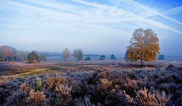 Kleurrijke morgen sur Vincent van Wijk