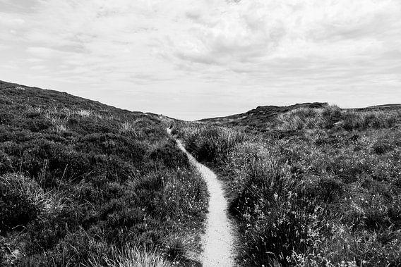 Het pad naar het einde van de wereld. van Rebecca Gruppen