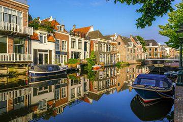 Nieuwe Rijn - Utrechtse Veer Leiden van Dirk van Egmond