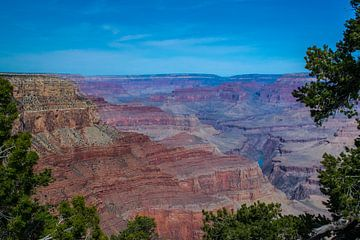 Kleurenpracht van de Grand Canyon van Rietje Bulthuis