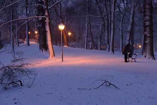 Park Servaasbolwerk / Sonnenborgh in Utrecht