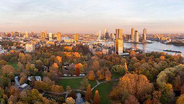 Herfst in de stad Rotterdam van