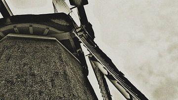 Molen. van PictureWork - Digital artist