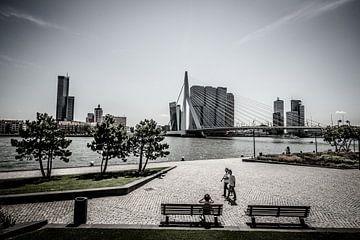 Erasmus brug Rotterdam. von Brian Morgan