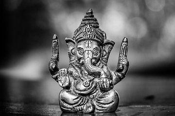 Ganesh van Dennis Timmer