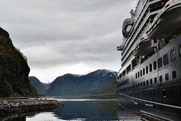 Cruiseschip van Patricia Leidekker