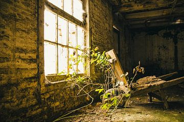 oude kruiwagen von Dylan Nieuwland
