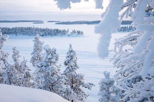Winter in Lapland van