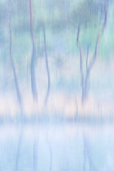 Abstracte bomen van Bob Luijks