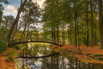 Herbst von Jan Koppelaar