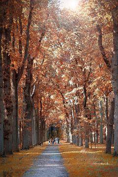 Wald mit Herbstfarben von Miranda van Hulst