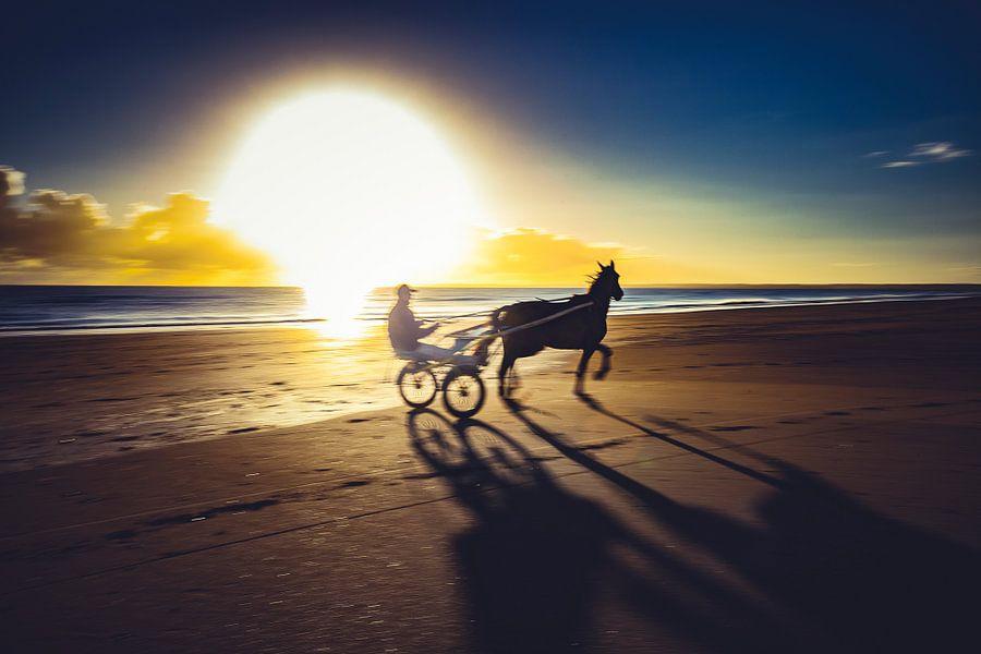 Jockey op het strand