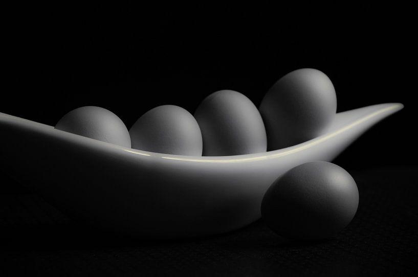 Kippenei in het juiste licht van Tanja Riedel