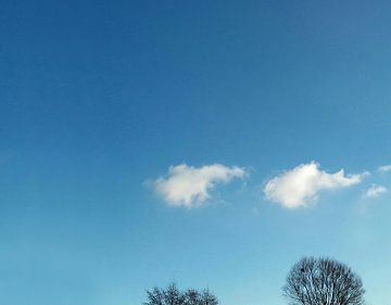 Wolken en boomtoppen van Rinke Velds