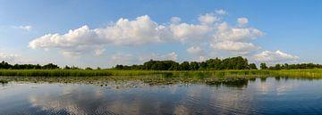 Wieden panorama van Sjoerd van der Wal