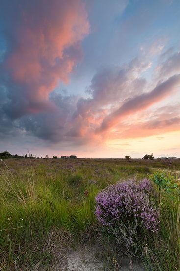 Zonsondergang op de hei van Ron Buist