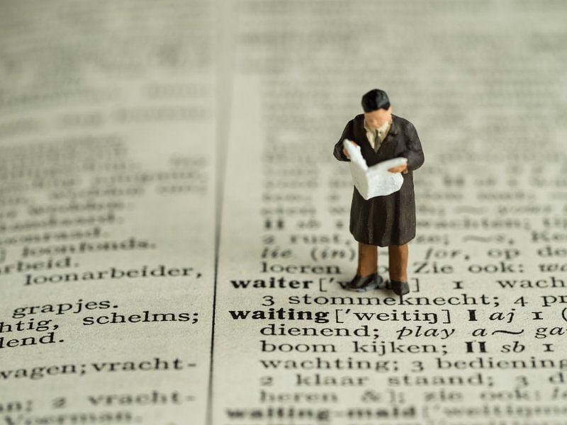 Man met krant #2 van Lex Schulte