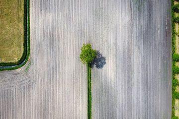 Landschaft von oben mit einer Drohne fotografiert von Pierre Verhoeven