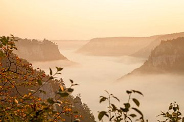 Herbstliches Donautal mit Nebel von Jiri Viehmann