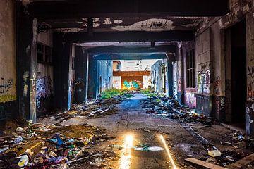 Oude fabriekshal in verval van Fred Leeflang