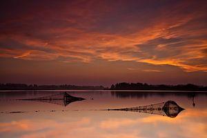 Visfuiken in het Lauwersmeer  van