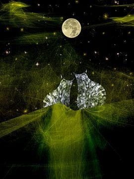 Weet je hoeveel sterren er staan ........ van Christine Nöhmeier