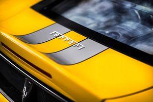 Ferrari 430 Scuderia detail van