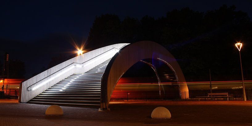 The Hobbit Bridge van Wim Zoeteman