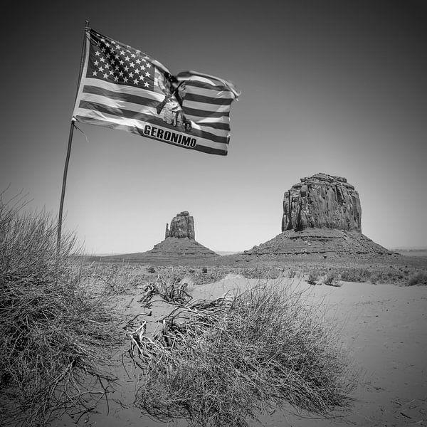 MONUMENT VALLEY USA zwart-wit van Melanie Viola