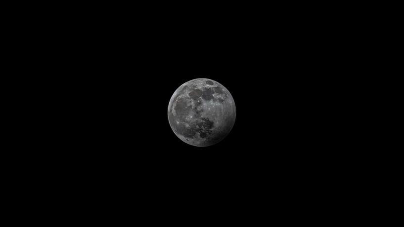 Naar de maan! van Masselink Portfolio