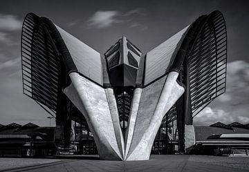 Spaceship Saint Exupéry II van Sander van der Werf