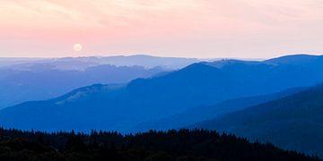 Uitzicht vanaf Schauinsland in het Zwarte Woud van