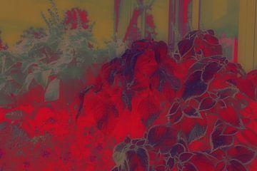 Abstract - Bloemen van Veerle Van den Langenbergh