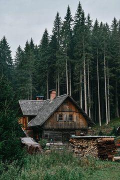Slowenischer Bauernhof von Prisca Visser