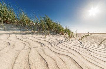 Sommer Dünen von Dirk Thoms