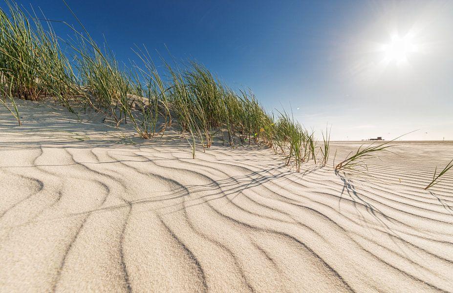 summer dunes van Dirk Thoms