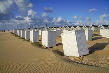 Strandleven! sur Dirk van Egmond