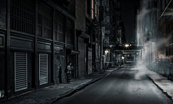 Woman In An Alley van Nico Geerlings