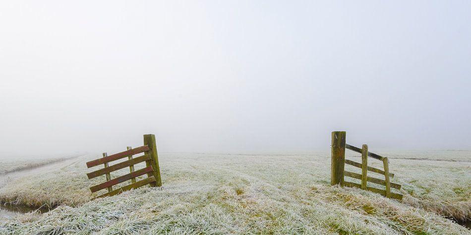 Leeg winterlandschap tijdens een koude mistige ochtend