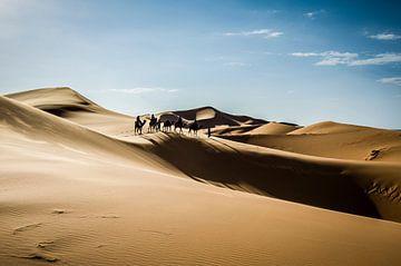 Kamelen karavaan van Peter Vruggink