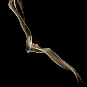 Rook 3 van Silvia Creemers